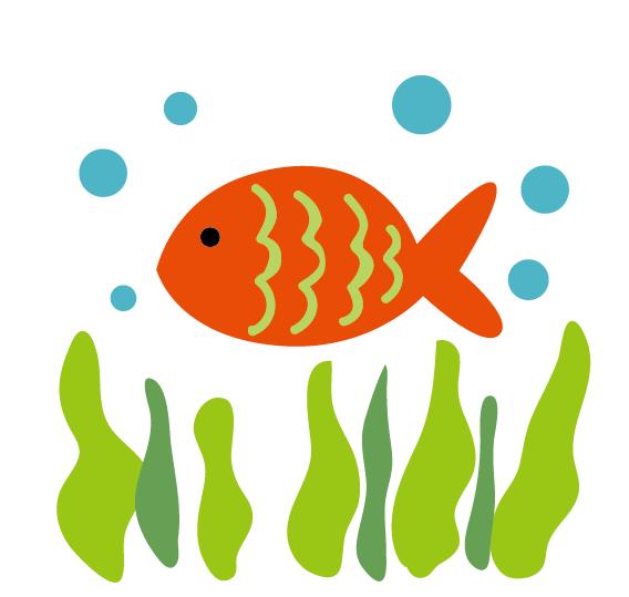 熱帯魚の引越し